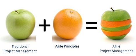agile-project-management